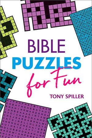 FILL133 Bible Puzzles 300